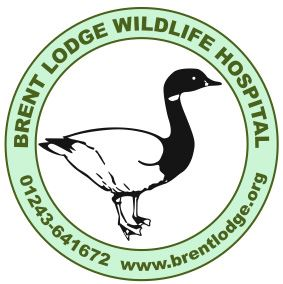 Brent Lodge Wildelife Hospital logo